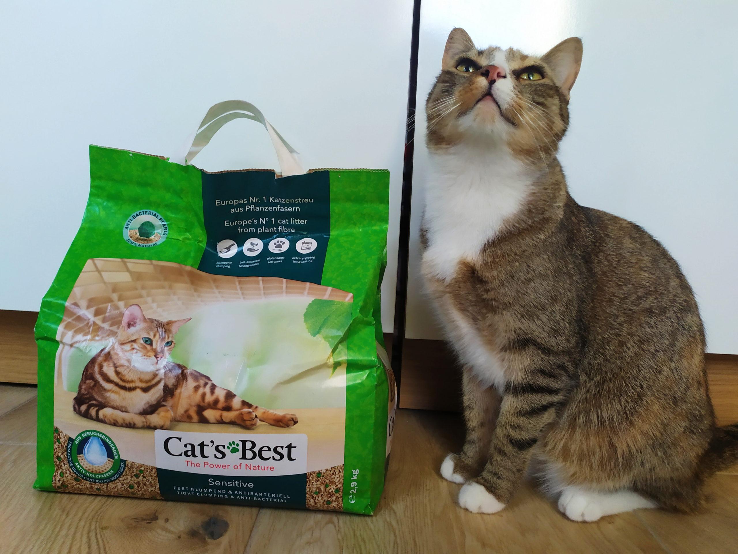 cats best kotuszkowo